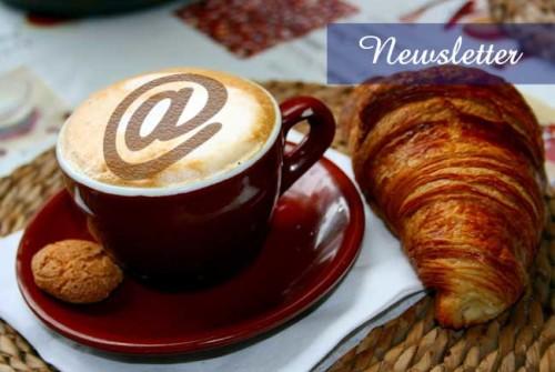 newsletter - SocialWebMax