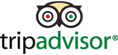 tripadvisor logo - SocialWebMax