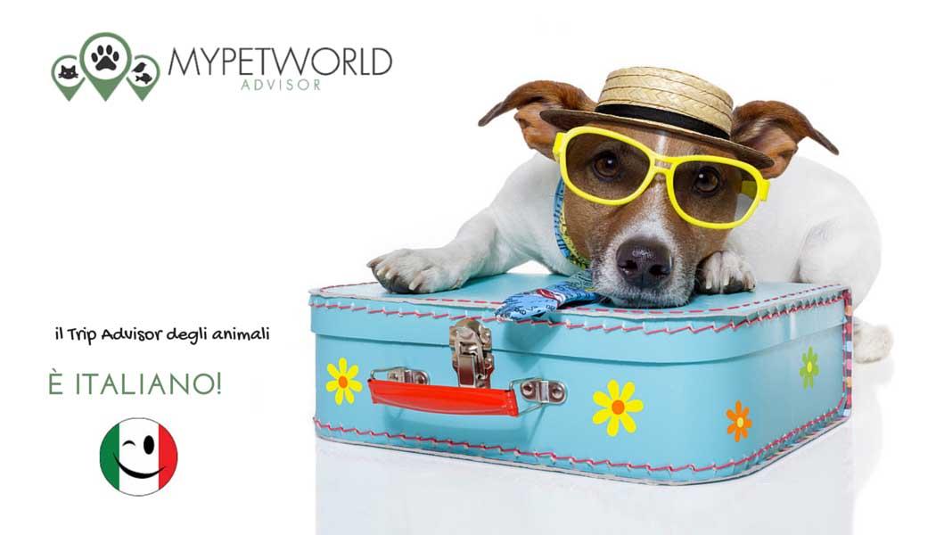 MyPetWorld, il TripAdvisor degli animali è italiano - SocialWebMax